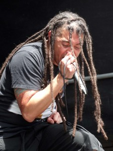 nonpoint-P45