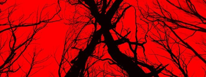 Blair Witch – The Woods