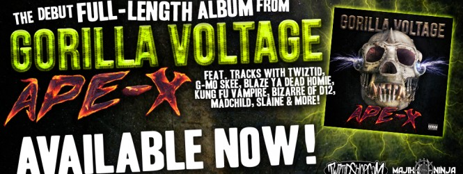 """Gorilla Voltage – """"You Know What Really Grinds My Gears"""" video"""
